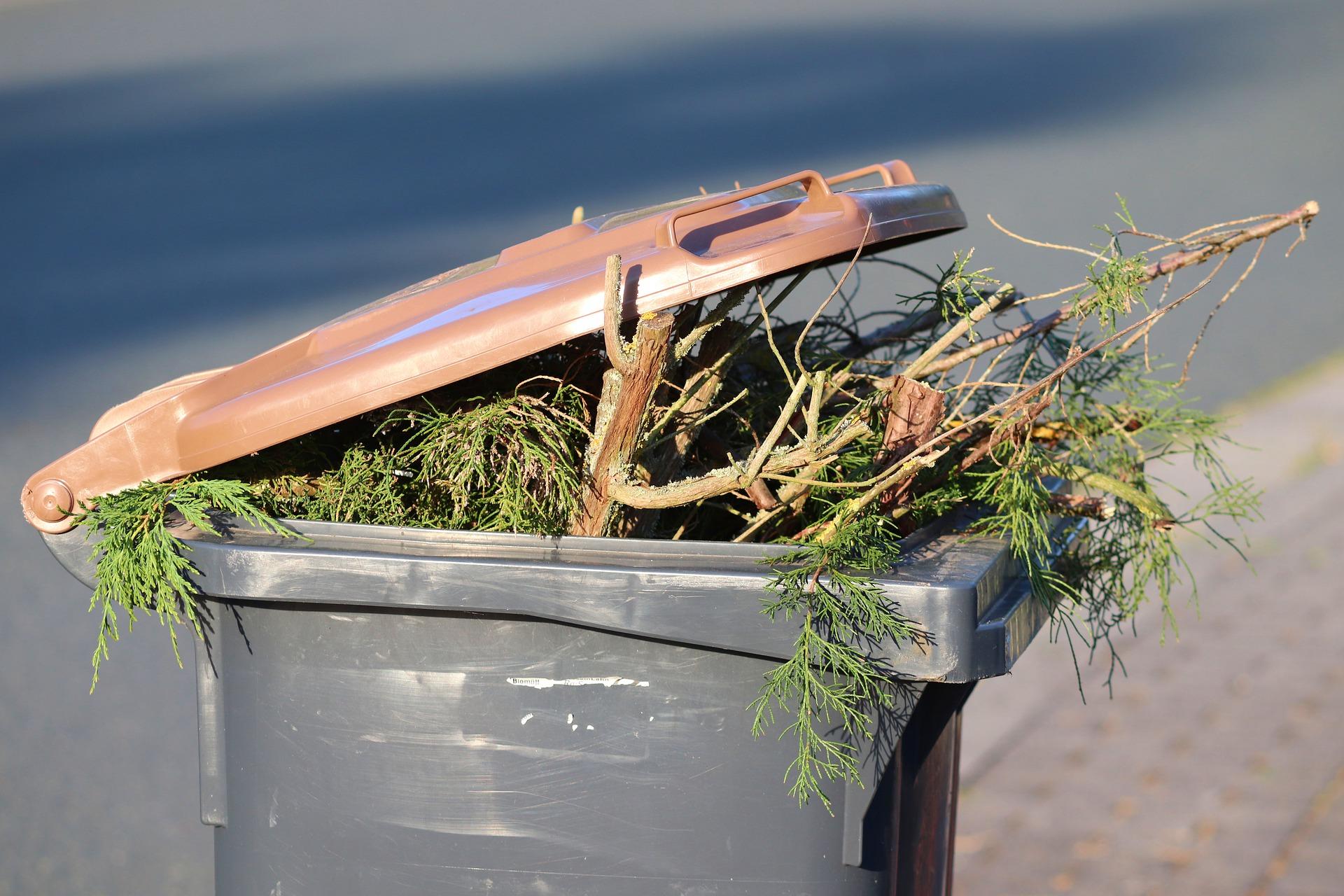 Nowe zasady gromadzenia i przekazywania do odbioru tzw. odpadów zielonych